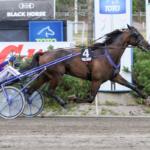 Suomen voitokkain hevonen avaa kautensa perjantaina